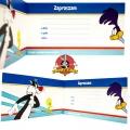 Zaproszenie na urodziny Looney Tunes Warner Bros V0175