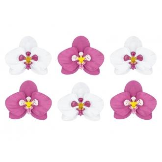 Dekoracje papierowe Aloha - Orchidee, 1op.