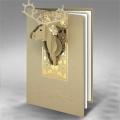 Kartka Świąteczna Poroże Renifera FS839
