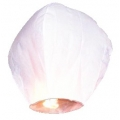 LAMP5T-008