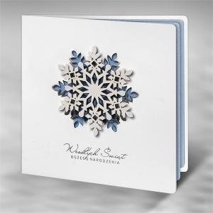 Kartka Świąteczna FS830tb-n