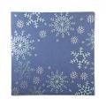 Kartka Świąteczna z płatkami śniegu FS998