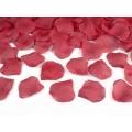 Tuba z płatkami róż, bordo, 40cm, 1szt.